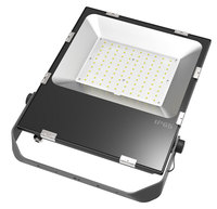 Ultra slim floodlight