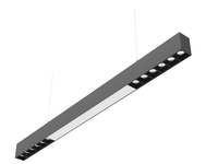 Linear system light